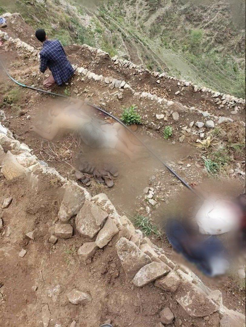 موظف التحريات في البحث الجنائي لدى ميليشيا الحوثي في حجة حامد الصباح وعناصر آخرين  أقدموا على قتل خمسة من عائلة النجار